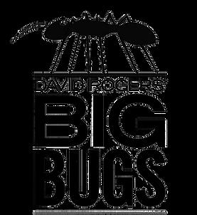BBPrimary logo.png