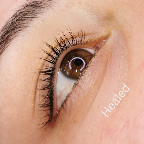 Healed Lash Enhancement (right before touch up)