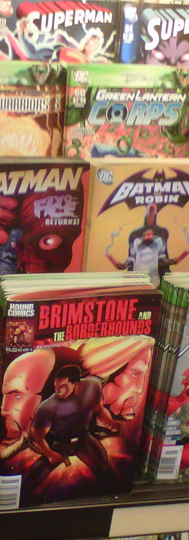 Brimstone and The Borderhounds on display at Barnes & Noble