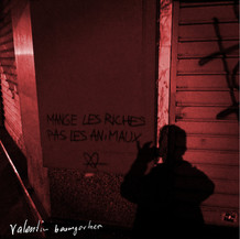 Mange Les Riches Pas Les Animaux - Valentin Baumgartner