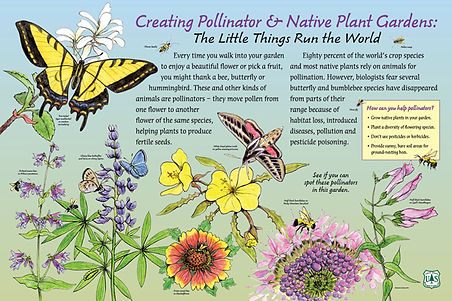 PollinatorPanel_Hi-NoCrops-main1.jpg