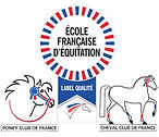 logo ffe site 1.jpg
