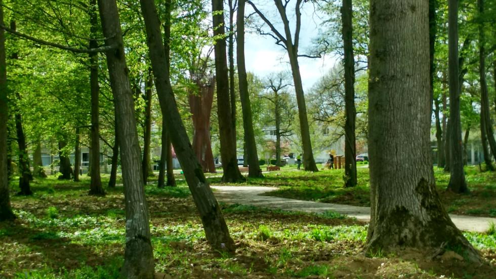CAMPANILE nto the woods by Elvira Guardia