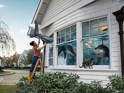 SHARK-WATER-DROPS_WEB-800.jpg