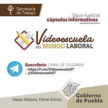 Videoescuela del Mundo laboral.jpg