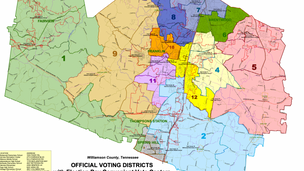 District 4 interim Board member appointment (2021 episode)