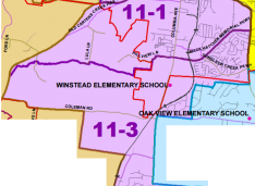 District 11 WCSB Candidates