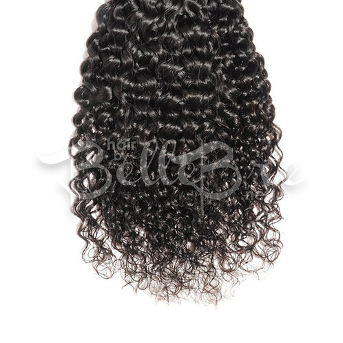 Virgin Burmese Exotic Wavy