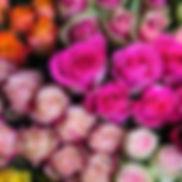 213167-2023x1482-Roses.jpg