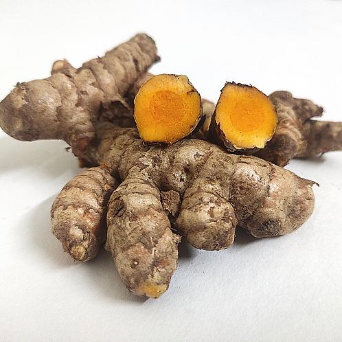 non- dried -turmeric/kachi haldi