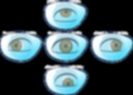 MyoSmart DIMS different gaze.png