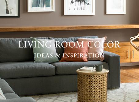 LIVING ROOM COLOR  IDEAS & INSPIRATION