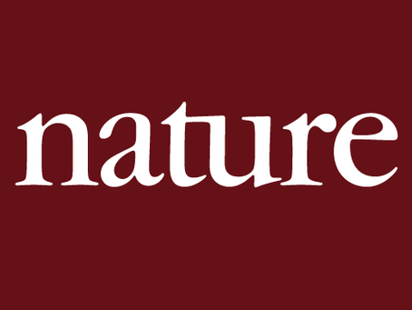 The story of Features Editor at Nature (2017)