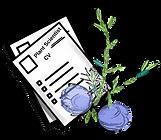 PlantSciCV (1).png