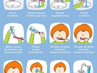 L'autonomie ... Le brossage des dents