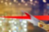 ribbon 2.PNG