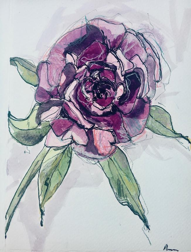 A Rose for Annie