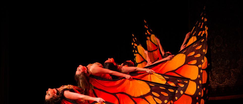 Tanzgala Schmetterlingsflügel