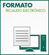 img-formato-recaudo-electronico.jpg