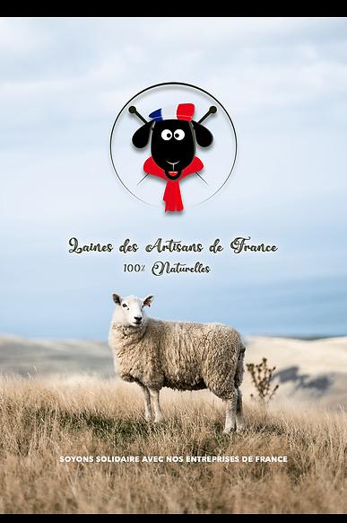 laines des artisans de france pub 1 worl