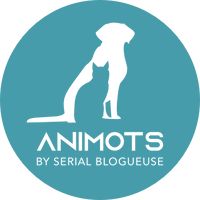 animots logo transparent fond turquoise.