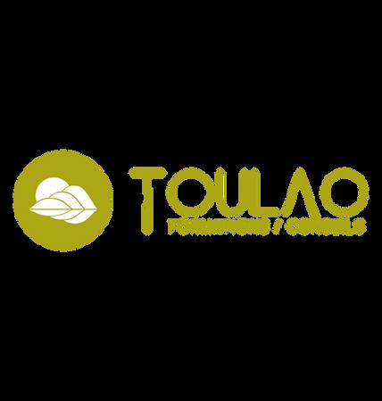 world-of-jamin-logo-toulao-green-et-blanc.png