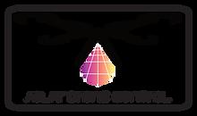 Solar drone services proposition de logo world of jamin 1