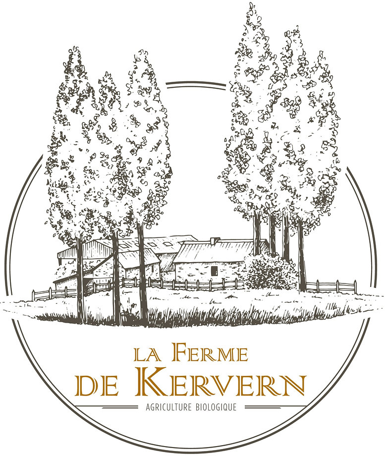 KERVERN-LOGO-DECLI-02_edited.jpg