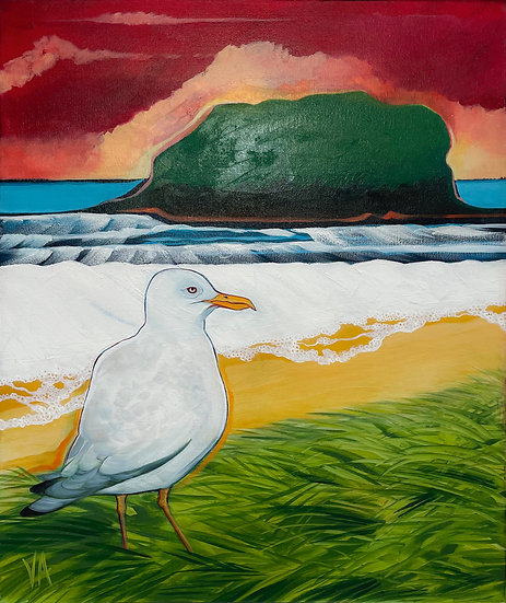 A Gull's View (Minnamurra Inspired)