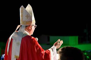 """""""Nos agarremos ao Manto de Nossa Senhora, que nos mostra o Cristo, que é Caminho, Verdade e Vida"""" -"""