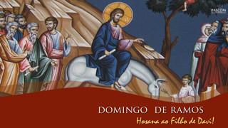 As lições do Domingo de Ramos