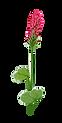 Bender Logo_freistehend201114 2.png