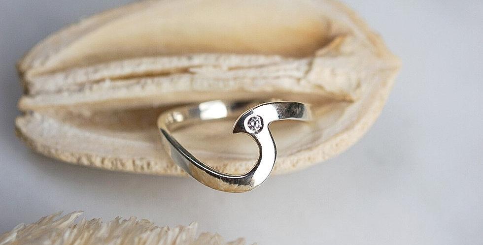 Ring Surfwave