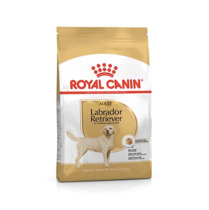Labrador Retriever Adulto 30lb
