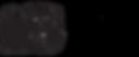 Logo Nuevo Black(2).png