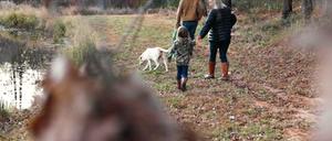 Hamilton family nature walk