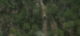 Screen Shot 2020-01-30 at 11.39.13 AM.pn