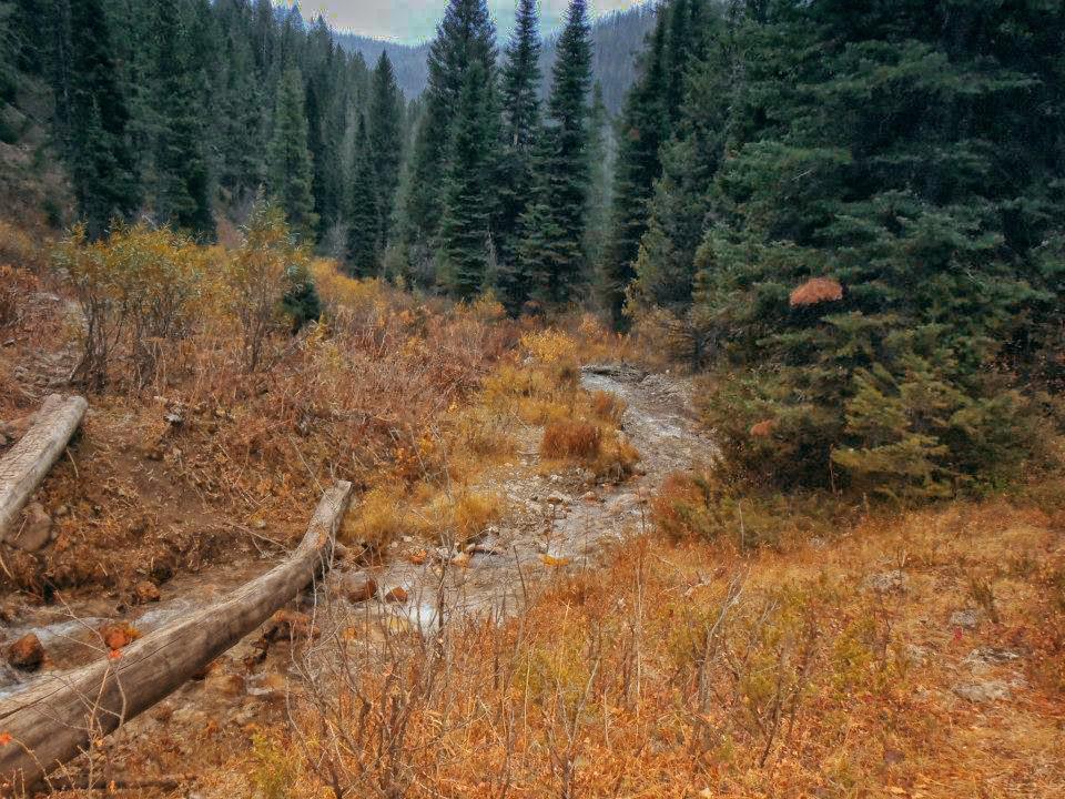 mountainside stream