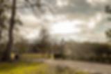 Screen Shot 2020-02-05 at 12.36.11 PM.pn