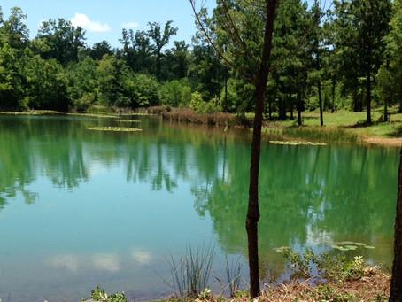 Targeting Water Sources