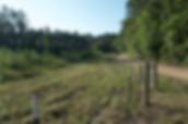 Screen Shot 2020-01-30 at 10.13.54 AM.pn