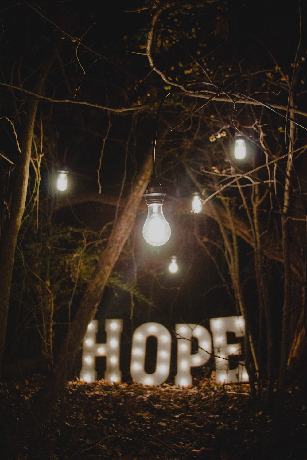 A dark forest with the word HOPE lit up