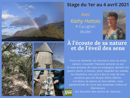 Stage nature avec Kathy Hattais