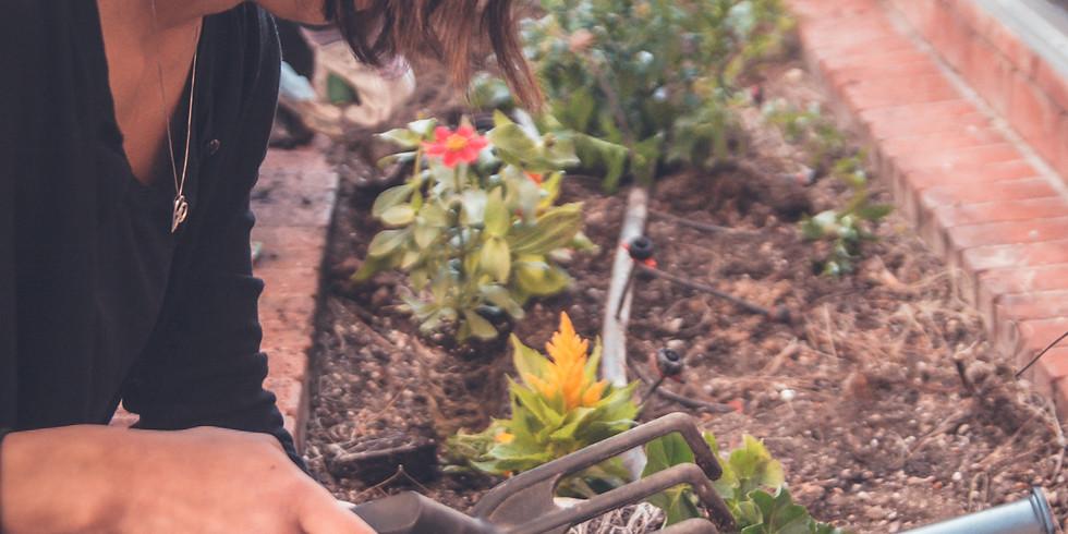 Gardening @ GAZON