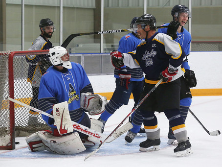 Amherstburg Police Service takes ice against Admirals for charity game