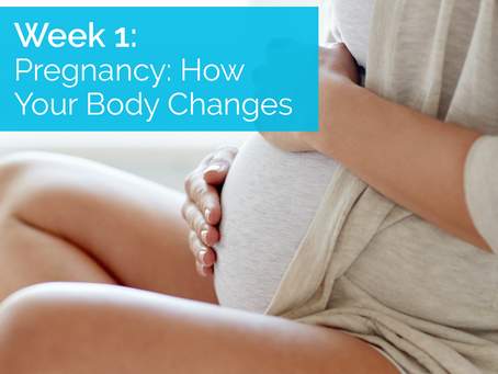 Pregnancy: How Your Body Changes