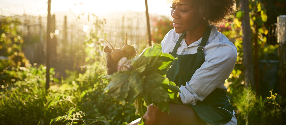 Is starting a garden not an option? Here are 3 ways you can still get access to fresh produce.