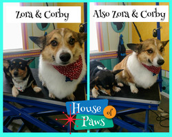 Zora and Corby