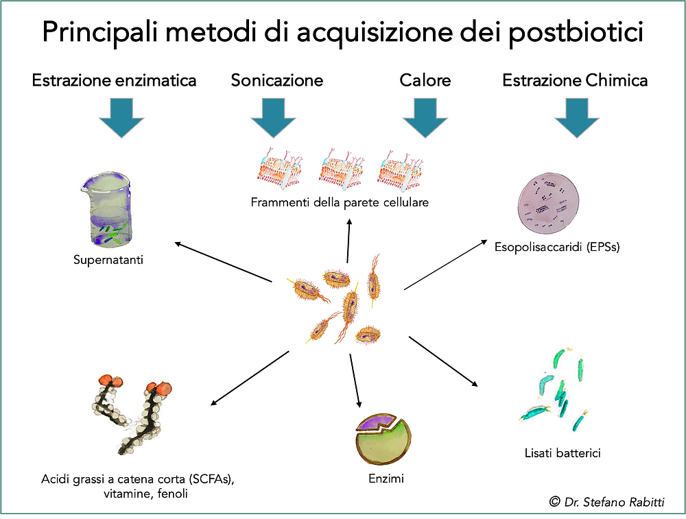 Postbiotici Dr. Rabitti