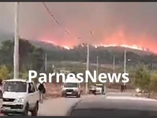 """Βίντεο με την φωτιά να """"κατεβαίνει"""" σε Θρακ/νες - ΑΜΕΣΗ ΕΚΚΕΝΩΣΗ ΒΑΡΥΜΠΟΜΠΗΣ ΚΑΙ ΘΡΑΚΟΜΑΚΕΔΟΝΩΝ!"""